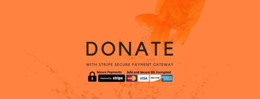 TBRP Donate feature image