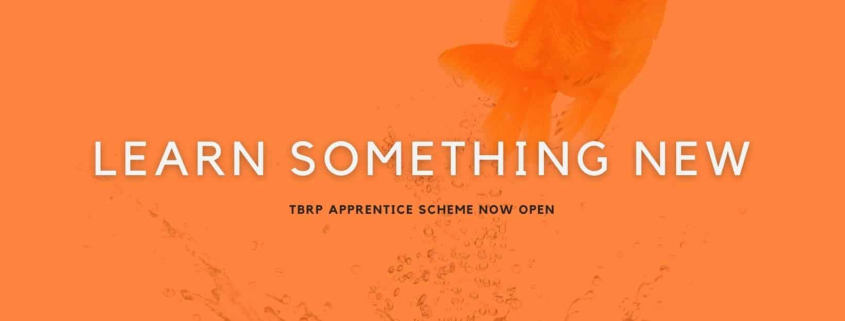 apprentice featured image